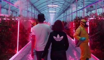 adidas Originals 2016 Spring/Summer 'Future' Campagne