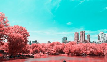 Infrared NYC 1
